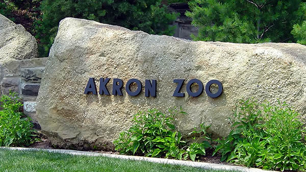 charter bus akron ohio attractions akron zoo