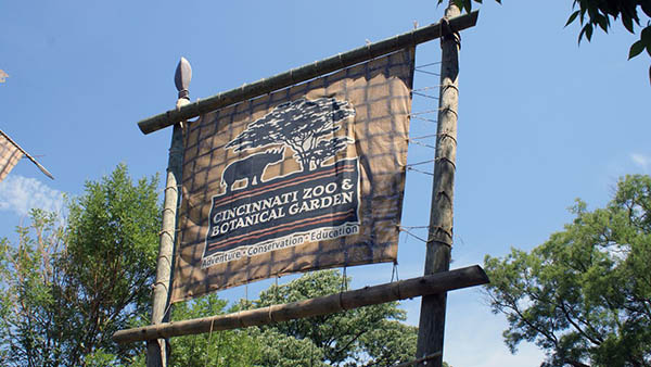 charter bus cincinnati ohio attractions cincinnati zoo