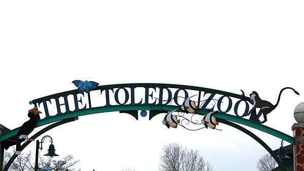 charter bus toledo ohio attractions toledo zoo and aquarium